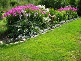 Как создать идеальный газон?