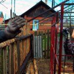 Загородные дома получили новый статус